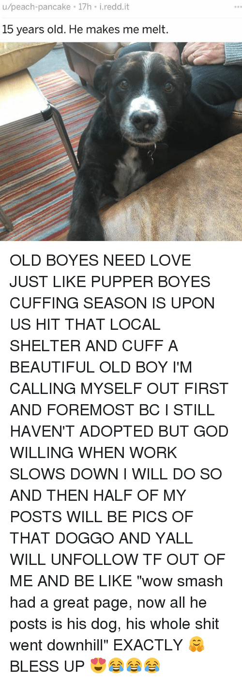 "Greatful: u/peach-pancake 17h i.redd.it  15 years old. He makes me melt. OLD BOYES NEED LOVE JUST LIKE PUPPER BOYES CUFFING SEASON IS UPON US HIT THAT LOCAL SHELTER AND CUFF A BEAUTIFUL OLD BOY I'M CALLING MYSELF OUT FIRST AND FOREMOST BC I STILL HAVEN'T ADOPTED BUT GOD WILLING WHEN WORK SLOWS DOWN I WILL DO SO AND THEN HALF OF MY POSTS WILL BE PICS OF THAT DOGGO AND YALL WILL UNFOLLOW TF OUT OF ME AND BE LIKE ""wow smash had a great page, now all he posts is his dog, his whole shit went downhill"" EXACTLY 🤗 BLESS UP 😍😂😂😂"