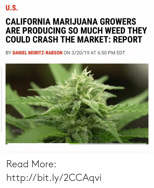 Memes, Weed, and California: U.S.  CALIFORNIA MARIJUANA GROWERS  ARE PRODUCING SO MUCH WEED THEY  COULD CRASH THE MARKET: REPORT  BY DANIEL MORITZ-RABSON ON 3/20/19 AT 6:50 PM EDT  an Read More: http://bit.ly/2CCAqvi