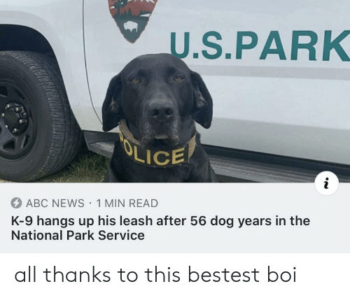 k-9: U.S.PARK  OLICE  ABC NEWS 1 MIN READ  K-9 hangs up his leash after 56 dog years in the  National Park Service all thanks to this bestest boi