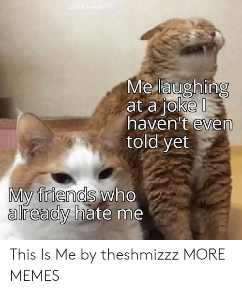 Dank, Friends, and Memes: u/TheUseleb  Me laughing  at a joke  haven't even  told yet  My friends who  already hate me This Is Me by theshmizzz MORE MEMES