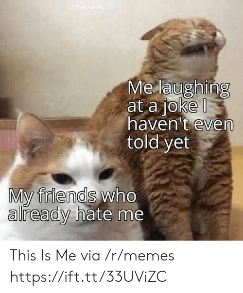 Friends, Memes, and Hate Me: u/TheUseleb  Me laughing  at a joke  haven't even  told yet  My friends who  already hate me This Is Me via /r/memes https://ift.tt/33UViZC