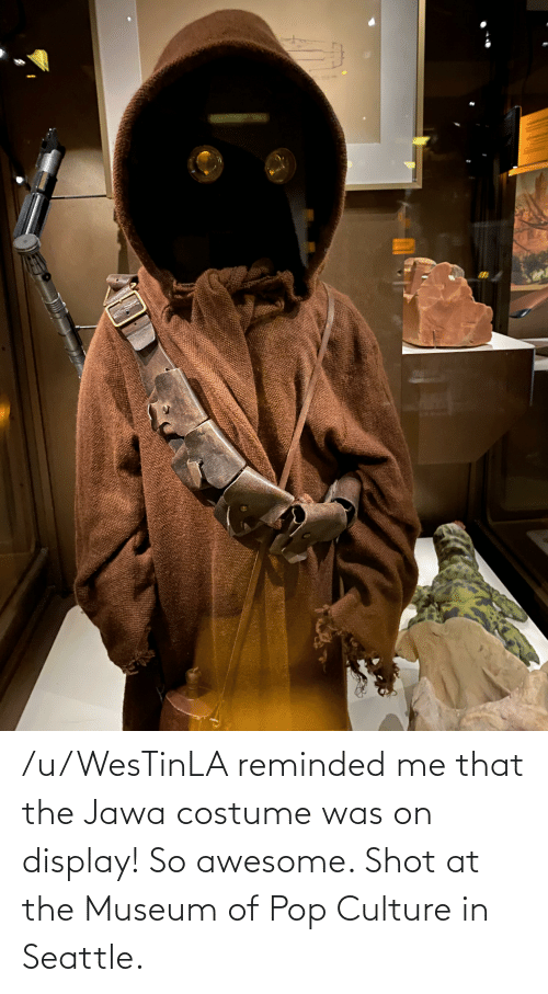 pop culture: /u/WesTinLA reminded me that the Jawa costume was on display! So awesome. Shot at the Museum of Pop Culture in Seattle.