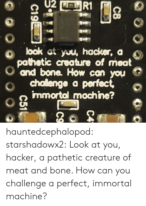 hacker: U2  R1  look at you, hacker, a  pathetic creature of meat  ond bone. How can you  chalenge a perfect,  immortal mochine?  C8  C4  C19E  C51 hauntedcephalopod:  starshadowx2: Look at you, hacker, a pathetic creature of meat and bone. How can you challenge a perfect, immortal machine?