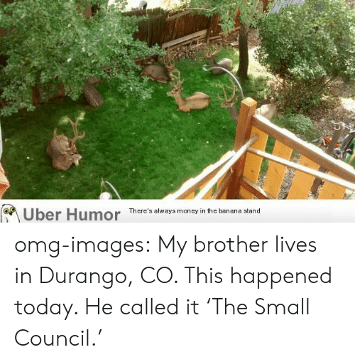 durango: Uber Humor  There's always money in the banana stand omg-images:  My brother lives in Durango, CO. This happened today. He called it 'The Small Council.'