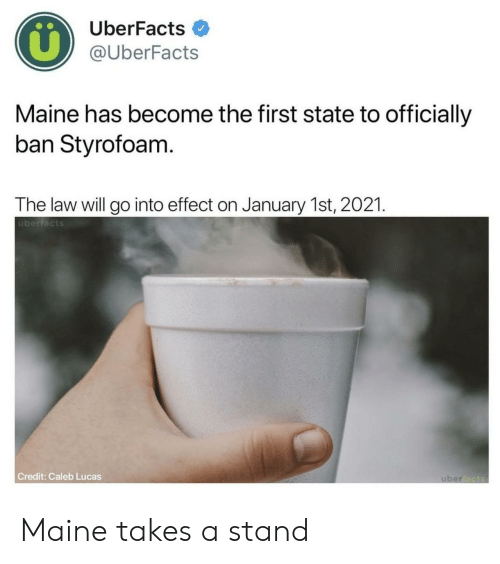Maine, Lucas, and Law: UberFacts  @UberFacts  Maine has become the first state to officially  ban Styrofoam  The law will go into effect on January 1st, 2021  überfacts  Credit: Caleb Lucas Maine takes a stand