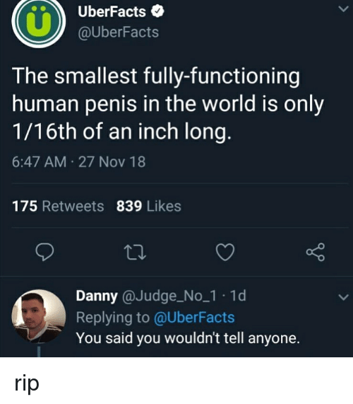 Funny, Penis, and World: UberFacts  @UberFacts  The smallest fully-functioning  human penis in the world is only  1/16th of an inch long  6:47 AM 27 Nov 18  175 Retweets 839 Likes  Danny @Judge_No_1 1d  Replying to @UberFacts  You said you wouldn't tell anyone. rip