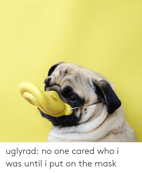 The Mask: uglyrad: no one cared who i was until i put on the mask