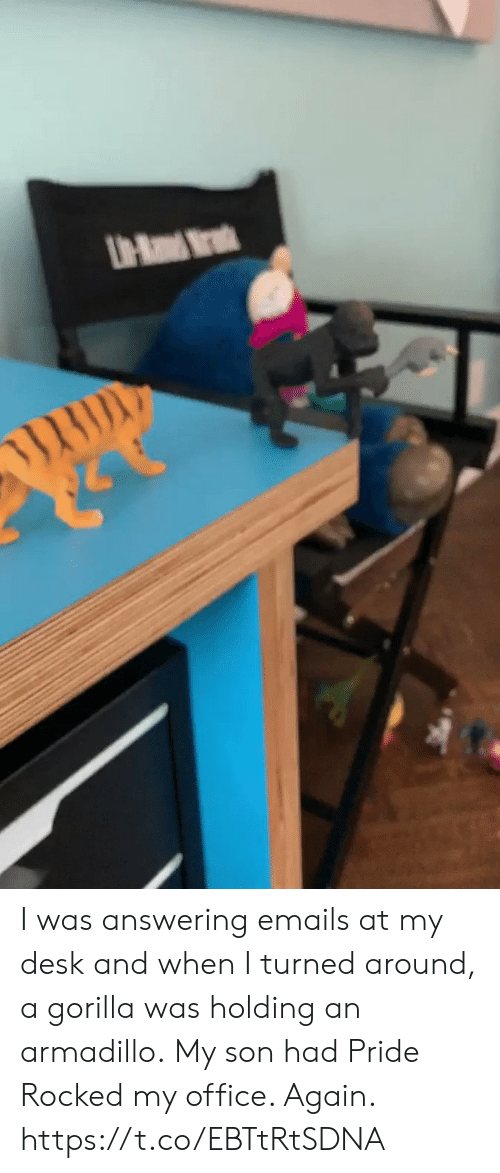gorilla: UH-Ra Mr I was answering emails at my desk and when I turned around, a gorilla was holding an armadillo. My son had Pride Rocked my office. Again. https://t.co/EBTtRtSDNA