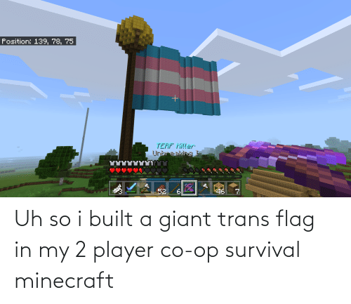 Giant: Uh so i built a giant trans flag in my 2 player co-op survival minecraft