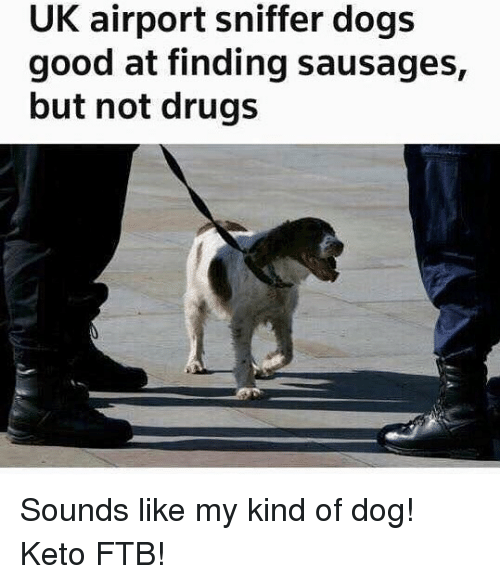 sausages: UK airport sniffer dogs  good at finding sausages,  but not drugs Sounds like my kind of dog! Keto FTB!