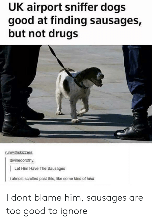 sausages: UK airport sniffer dogs  good at finding sausages,  but not drugs  runwithskizzers:  divinedorothy:  Let Him Have The Sausages  i almost scrolled past this, like some kind of idiot I dont blame him, sausages are too good to ignore