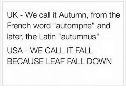 """Its Fall: UK We call it Autumn, from the  French word """"autompne"""" and  later, the Latin """"autumnus''  USA WE CALL IT FALL  BECAUSE LEAF FALL DOWN"""