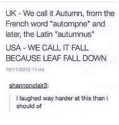 """Its Fall: UK We call it Autumn, from the  French word """"autompne"""" and  later, the Latin """"autumnus""""  USA WE CALL IT FALL  BECAUSE LEAF FALL DOWN  19/11/2013 11:44  Shannonclair3:  i laughed way harder at this than i  should of"""