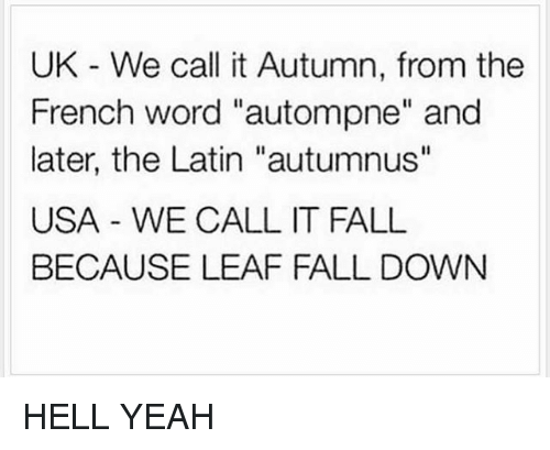 """Its Fall: UK We call it Autumn, from the  French word """"autompne"""" and  later, the Latin """"autumnus''  USA WE CALL IT FALL  BECAUSE LEAF FALL DOWN HELL YEAH"""