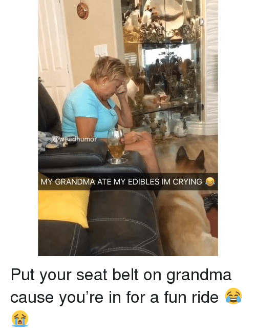 Crying, Grandma, and Weed: umo  MY GRANDMA ATE MY EDIBLES IM CRYING Put your seat belt on grandma cause you're in for a fun ride 😂😭