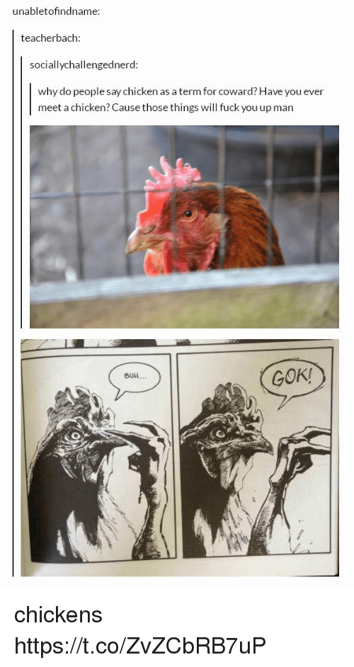 Ups Man: unabletofindname:  teacherbach  sociallychallengedne  rd:  why do people say chicken as a term for coward? Have you ever  meet a chicken? Cause those things will fuck you up man  GOK!  BUH chickens https://t.co/ZvZCbRB7uP