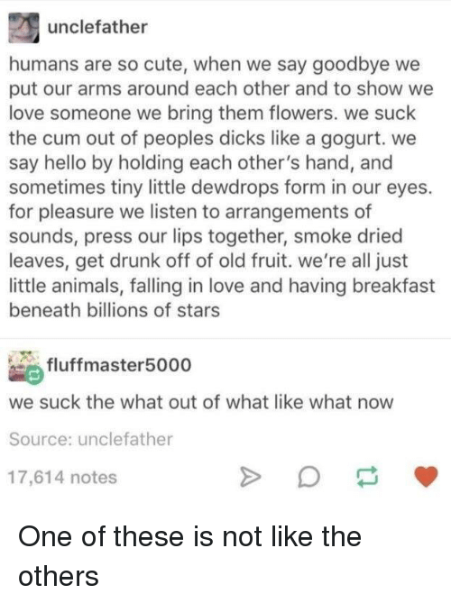 Animals, Cum, and Cute: unclefather  humans are so cute, when we say goodbye we  put our arms around each other and to show we  love someone we bring them flowers. we suck  the cum out of peoples dicks like a gogurt. we  say hello by holding each other's hand, and  sometimes tiny little dewdrops form in our eyes.  for pleasure we listen to arrangements of  sounds, press our lips together, smoke dried  leaves, get drunk off of old fruit. we're all just  little animals, falling in love and having breakfast  beneath billions of stars  fluffmaster5000  we suck the what out of what like what now  Source: unclefather  17,614 notes One of these is not like the others