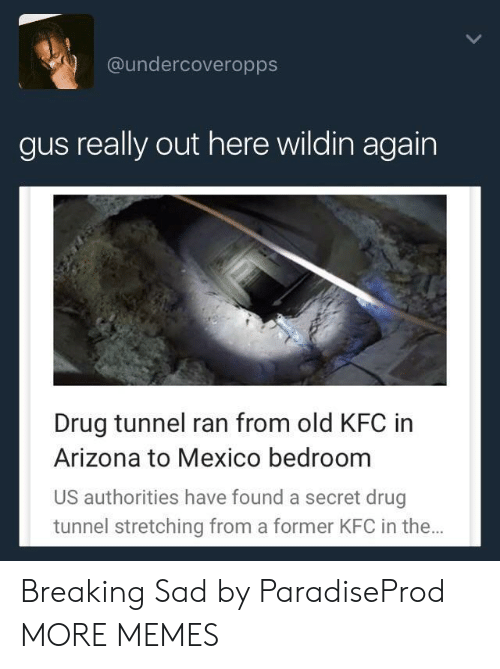 Dank, Kfc, and Memes: @undercoveropps  gus really out here wildin again  Drug tunnel ran from old KFC in  Arizona to Mexico bedroom  US authorities have found a secret drug  tunnel stretching from a former KFC in the Breaking Sad by ParadiseProd MORE MEMES