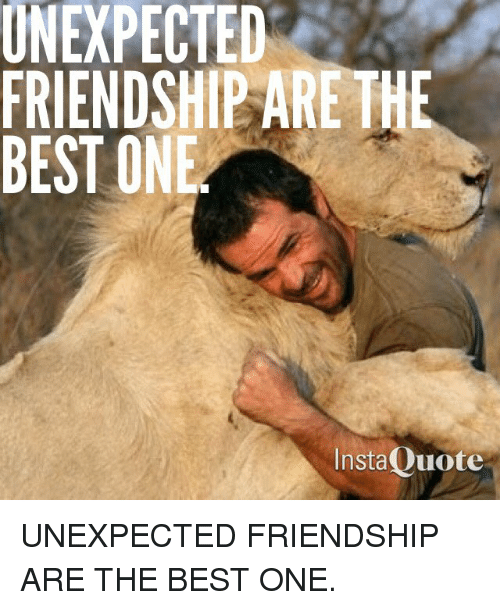 Unexpectancy: UNEXPECTED  FRIENDSHIP ARE THE  BEST ONE  InstaQuote UNEXPECTED FRIENDSHIP ARE THE BEST ONE.