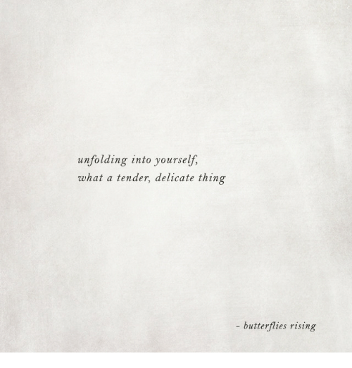 Thing, Butterflies, and Tender: unfolding into yourself,  what a tender, delicate thing  - butterflies rising