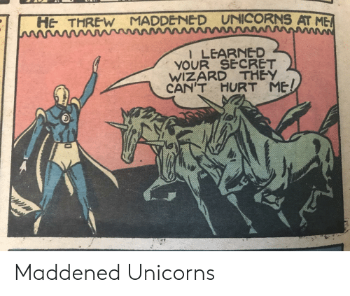 unicorns: UNICORNS AT ME  HE THREW MADDENE D  l LEARNED  YOUR SECRET  WIZARD THEY  CAN'T  HURT ME! Maddened Unicorns