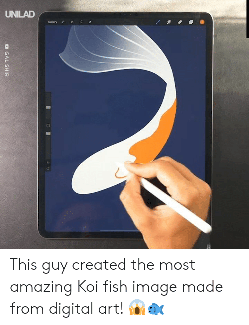 digital: UNILAD  S  Gallery  O GAL SHIR This guy created the most amazing Koi fish image made from digital art! 😱🐟