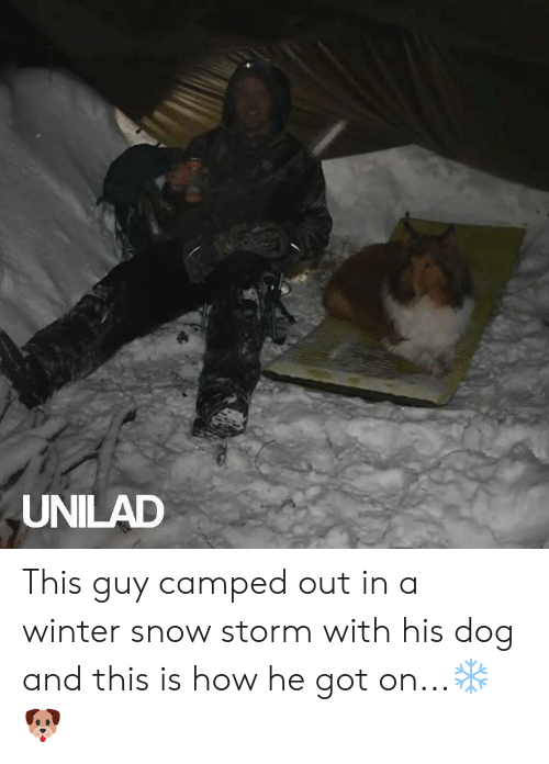 Dank, Winter, and Snow: UNILAD This guy camped out in a winter snow storm with his dog and this is how he got on...❄️🐶