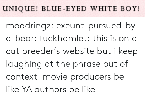 phrase: UNIQUE! BLUE-EYED WHITE BOY moodringz:  exeunt-pursued-by-a-bear:  fuckhamlet:  this is on a cat breeder's website but i keep laughing at the phrase out of context   movie producers be like   YA authors be like