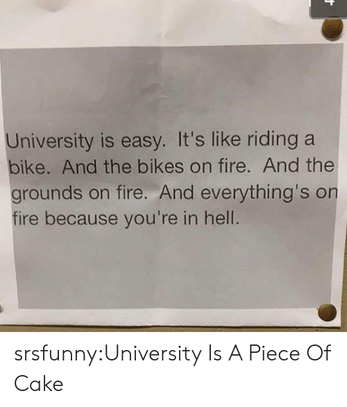 Piece Of Cake: University is easy. It's like riding a  bike. And the bikes on fire. And the  grounds on fire. And everything's on  fire because you're in hell. srsfunny:University Is A Piece Of Cake