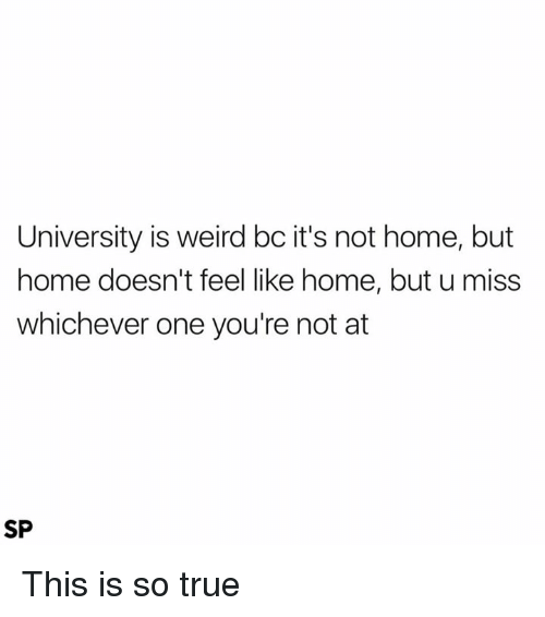 feels like home: University is weird bc it's not home, but  home doesn't feel like home, but u miss  whichever one you're not at  SP This is so true