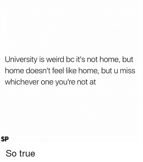 feels like home: University is weird bc it's not home, but  home doesn't feel like home, but u miss  whichever one you're not at  SP So true