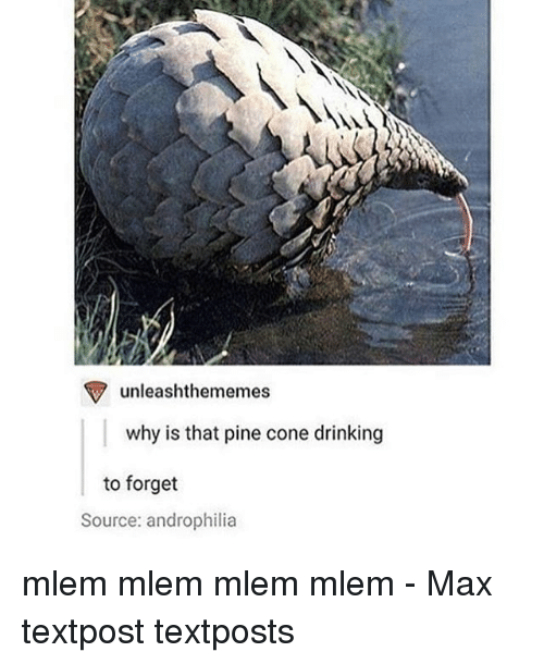 Coneing: unleashthememes  why is that pine cone drinking  to forget  Source: androphilia mlem mlem mlem mlem - Max textpost textposts