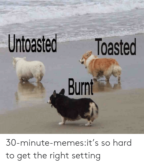 Toasted: Untoasted Toasted 30-minute-memes:it's so hard to get the right setting