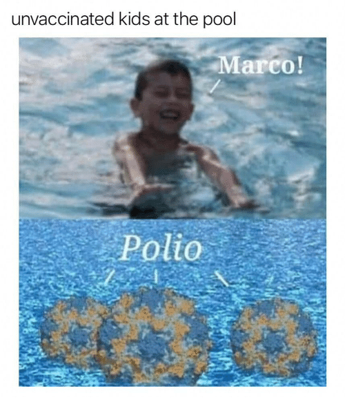 Memes, Kids, and Pool: unvaccinated kids at the pool  arco!  Polio