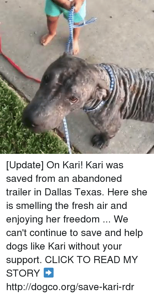Helping Dog: [Update] On Kari!   Kari was saved from an abandoned trailer in Dallas Texas. Here she is smelling the fresh air and enjoying her freedom ...  We can't continue to save and help dogs like Kari without your support. CLICK TO READ MY STORY ➡ http://dogco.org/save-kari-rdr