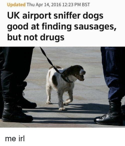 sausages: Updated Thu Apr 14, 2016 12:23 PM BST  UK airport sniffer dogs  good at finding sausages,  but not drugs me irl