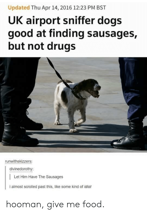 sausages: Updated Thu Apr 14, 2016 12:23 PM BST  UK airport sniffer dogs  good at finding sausages,  but not drugs  runwithskizzers:  divinedorothy:  Let Him Have The Sausages  i almost scrolled past this, like some kind of idiot hooman, give me food.