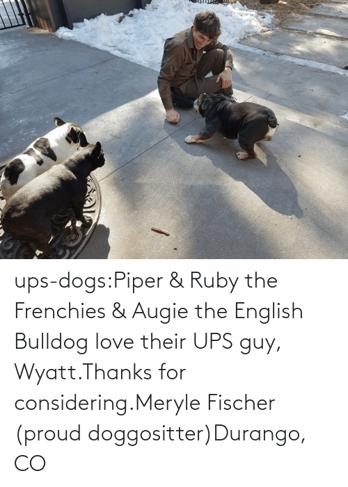 UPS: ups-dogs:Piper & Ruby the Frenchies & Augie the English Bulldog love their UPS guy, Wyatt.Thanks for considering.Meryle Fischer (proud doggositter)Durango, CO