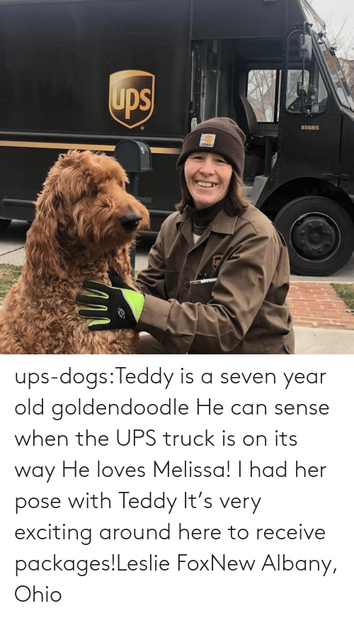 UPS: ups-dogs:Teddy is a seven year old goldendoodle He can sense when the UPS truck is on its way He loves Melissa! I had her pose with Teddy It's very exciting around here to receive packages!Leslie FoxNew Albany, Ohio
