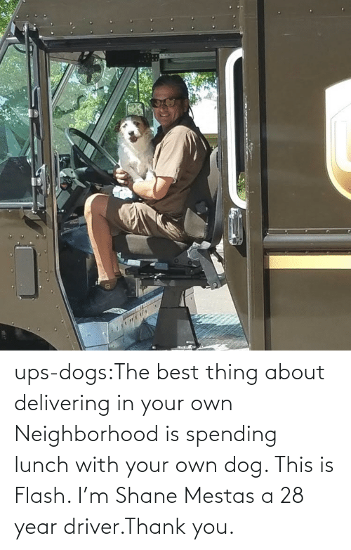 UPS: ups-dogs:The best thing about delivering in your own Neighborhood is spending lunch with your own dog. This is Flash. I'm Shane Mestas a 28 year driver.Thank you.
