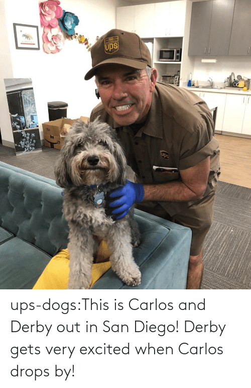 derby: ups-dogs:This is Carlos and Derby out in San Diego! Derby gets very excited when Carlos drops by!