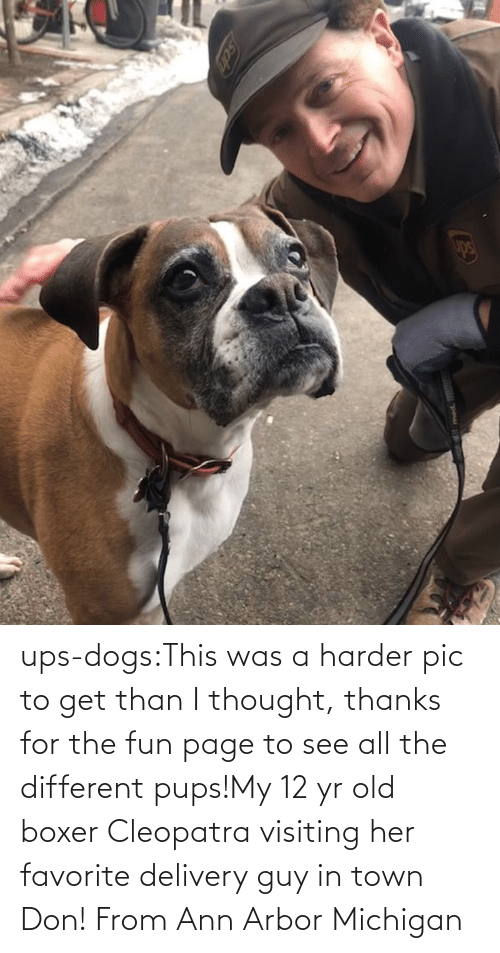 UPS: ups-dogs:This was a harder pic to get than I thought, thanks for the fun page to see all the different pups!My 12 yr old boxer Cleopatra visiting her favorite delivery guy in town Don! From Ann Arbor Michigan