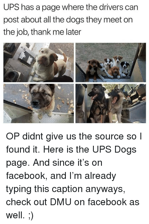 dmu: UPS has a page where the drivers can  post about all the dogs they meet on  the job, thank me later OP didnt give us the source so I found it. Here is the UPS Dogs page. And since it's on facebook, and I'm already typing this caption anyways, check out DMU on facebook as well. ;)