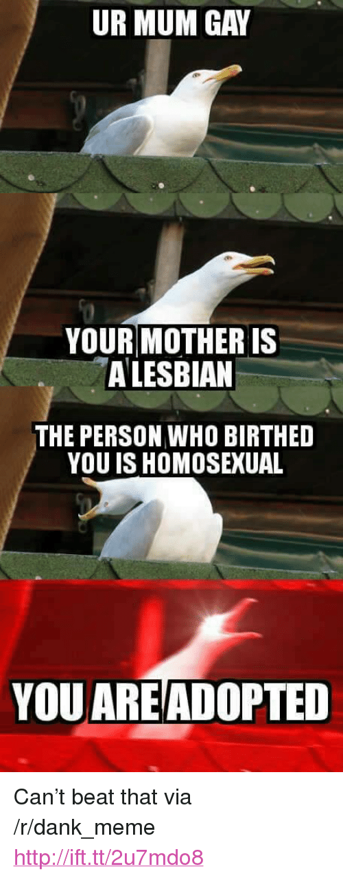 """Beat That: UR MUM GAY  YOUR MOTHER IS  A LESBIAN  THE PERSON WHO BIRTHED  YOU IS HOMOSEXUAL  YOU AREADOPTED <p>Can&rsquo;t beat that via /r/dank_meme <a href=""""http://ift.tt/2u7mdo8"""">http://ift.tt/2u7mdo8</a></p>"""