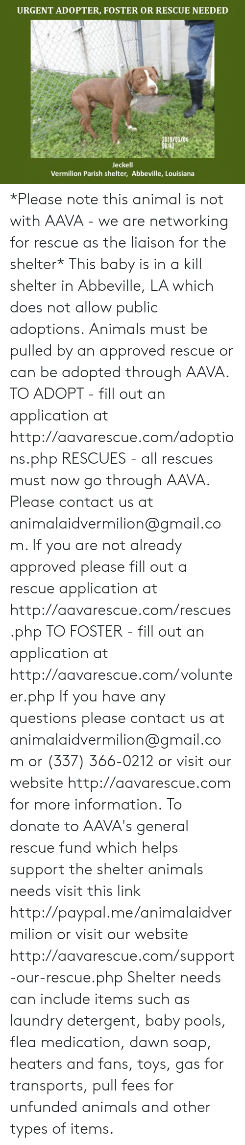 Fill Out: URGENT ADOPTER, FOSTER OR RESCUE NEEDED  019/03/04  Jeckell  Vermilion Parish shelter, Abbeville, Louisiana *Please note this animal is not with AAVA - we are networking for rescue as the liaison for the shelter* This baby is in a kill shelter in Abbeville, LA which does not allow public adoptions. Animals must be pulled by an approved rescue or can be adopted through AAVA.  TO ADOPT - fill out an application at http://aavarescue.com/adoptions.php  RESCUES - all rescues must now go through AAVA. Please contact us at animalaidvermilion@gmail.com. If you are not already approved please fill out a rescue application at http://aavarescue.com/rescues.php  TO FOSTER - fill out an application at http://aavarescue.com/volunteer.php  If you have any questions please contact us at animalaidvermilion@gmail.com or (337) 366-0212 or visit our website http://aavarescue.com for more information.  To donate to AAVA's general rescue fund which helps support the shelter animals needs visit this link http://paypal.me/animalaidvermilion or visit our website http://aavarescue.com/support-our-rescue.php Shelter needs can include items such as laundry detergent, baby pools, flea medication, dawn soap, heaters and fans, toys, gas for transports, pull fees for unfunded animals and other types of items.