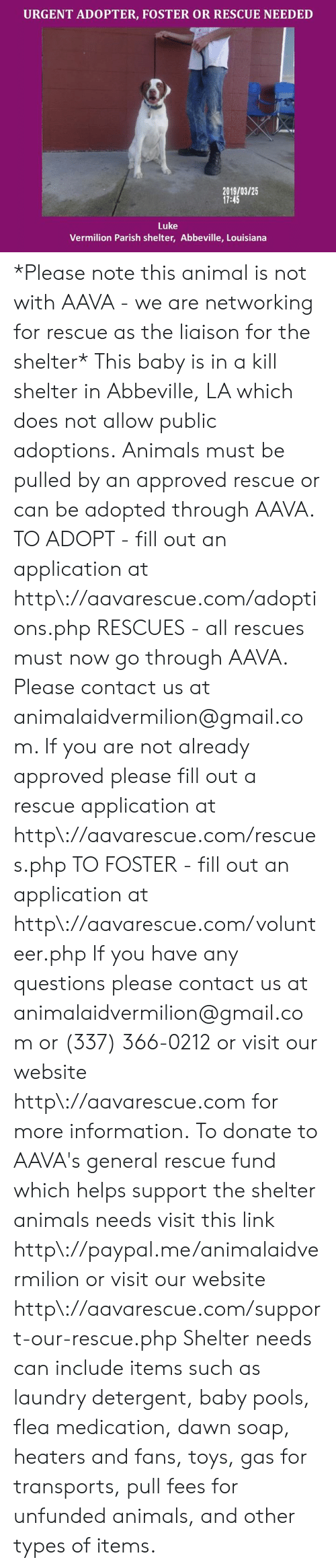 any questions: URGENT ADOPTER, FOSTER OR RESCUE NEEDED  91800125  2019/03/25  17:45  Luke  Vermilion Parish shelter, Abbeville, Louisiana *Please note this animal is not with AAVA - we are networking for rescue as the liaison for the shelter* This baby is in a kill shelter in Abbeville, LA which does not allow public adoptions. Animals must be pulled by an approved rescue or can be adopted through AAVA.  TO ADOPT - fill out an application at http\://aavarescue.com/adoptions.php  RESCUES - all rescues must now go through AAVA. Please contact us at animalaidvermilion@gmail.com. If you are not already approved please fill out a rescue application at http\://aavarescue.com/rescues.php  TO FOSTER - fill out an application at http\://aavarescue.com/volunteer.php  If you have any questions please contact us at animalaidvermilion@gmail.com or (337) 366-0212 or visit our website http\://aavarescue.com for more information.  To donate to AAVA's general rescue fund which helps support the shelter animals needs visit this link http\://paypal.me/animalaidvermilion or visit our website http\://aavarescue.com/support-our-rescue.php Shelter needs can include items such as laundry detergent, baby pools, flea medication, dawn soap, heaters and fans, toys, gas for transports, pull fees for unfunded animals, and other types of items.