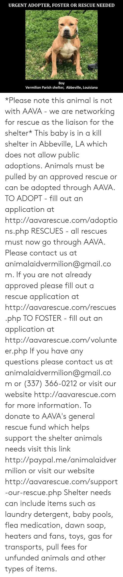 Fill Out: URGENT ADOPTER, FOSTER OR RESCUE NEEDED  Boy  Vermilion Parish shelter, Abbeville, Louisiana *Please note this animal is not with AAVA - we are networking for rescue as the liaison for the shelter* This baby is in a kill shelter in Abbeville, LA which does not allow public adoptions. Animals must be pulled by an approved rescue or can be adopted through AAVA.  TO ADOPT - fill out an application at http://aavarescue.com/adoptions.php  RESCUES - all rescues must now go through AAVA. Please contact us at animalaidvermilion@gmail.com. If you are not already approved please fill out a rescue application at http://aavarescue.com/rescues.php  TO FOSTER - fill out an application at http://aavarescue.com/volunteer.php  If you have any questions please contact us at animalaidvermilion@gmail.com or (337) 366-0212 or visit our website http://aavarescue.com for more information.  To donate to AAVA's general rescue fund which helps support the shelter animals needs visit this link http://paypal.me/animalaidvermilion or visit our website http://aavarescue.com/support-our-rescue.php Shelter needs can include items such as laundry detergent, baby pools, flea medication, dawn soap, heaters and fans, toys, gas for transports, pull fees for unfunded animals and other types of items.