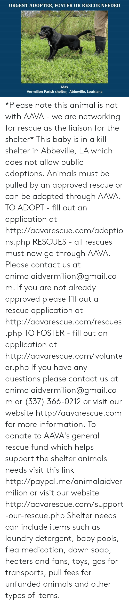 Fill Out: URGENT ADOPTER, FOSTER OR RESCUE NEEDED  Max  Vermilion Parish shelter, Abbeville, Louisiana *Please note this animal is not with AAVA - we are networking for rescue as the liaison for the shelter* This baby is in a kill shelter in Abbeville, LA which does not allow public adoptions. Animals must be pulled by an approved rescue or can be adopted through AAVA.  TO ADOPT - fill out an application at http://aavarescue.com/adoptions.php  RESCUES - all rescues must now go through AAVA. Please contact us at animalaidvermilion@gmail.com. If you are not already approved please fill out a rescue application at http://aavarescue.com/rescues.php  TO FOSTER - fill out an application at http://aavarescue.com/volunteer.php  If you have any questions please contact us at animalaidvermilion@gmail.com or (337) 366-0212 or visit our website http://aavarescue.com for more information.  To donate to AAVA's general rescue fund which helps support the shelter animals needs visit this link http://paypal.me/animalaidvermilion or visit our website http://aavarescue.com/support-our-rescue.php Shelter needs can include items such as laundry detergent, baby pools, flea medication, dawn soap, heaters and fans, toys, gas for transports, pull fees for unfunded animals and other types of items.