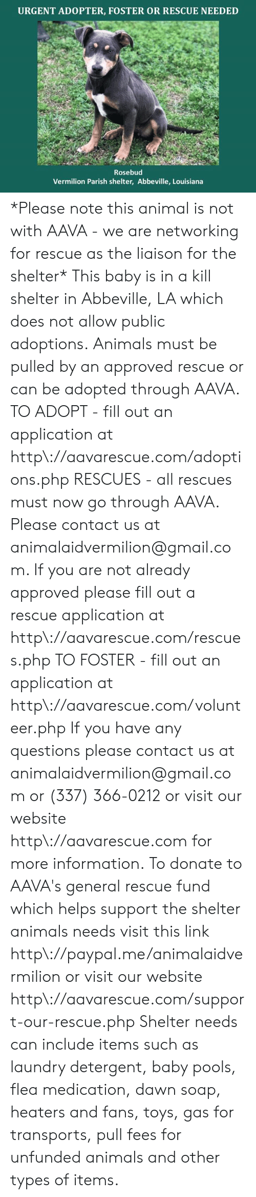 Fill Out: URGENT ADOPTER, FOSTER OR RESCUE NEEDED  Rosebud  Vermilion Parish shelter, Abbeville, Louisiana *Please note this animal is not with AAVA - we are networking for rescue as the liaison for the shelter* This baby is in a kill shelter in Abbeville, LA which does not allow public adoptions. Animals must be pulled by an approved rescue or can be adopted through AAVA.  TO ADOPT - fill out an application at http\://aavarescue.com/adoptions.php  RESCUES - all rescues must now go through AAVA. Please contact us at animalaidvermilion@gmail.com. If you are not already approved please fill out a rescue application at http\://aavarescue.com/rescues.php  TO FOSTER - fill out an application at http\://aavarescue.com/volunteer.php  If you have any questions please contact us at animalaidvermilion@gmail.com or (337) 366-0212 or visit our website http\://aavarescue.com for more information.  To donate to AAVA's general rescue fund which helps support the shelter animals needs visit this link http\://paypal.me/animalaidvermilion or visit our website http\://aavarescue.com/support-our-rescue.php Shelter needs can include items such as laundry detergent, baby pools, flea medication, dawn soap, heaters and fans, toys, gas for transports, pull fees for unfunded animals and other types of items.