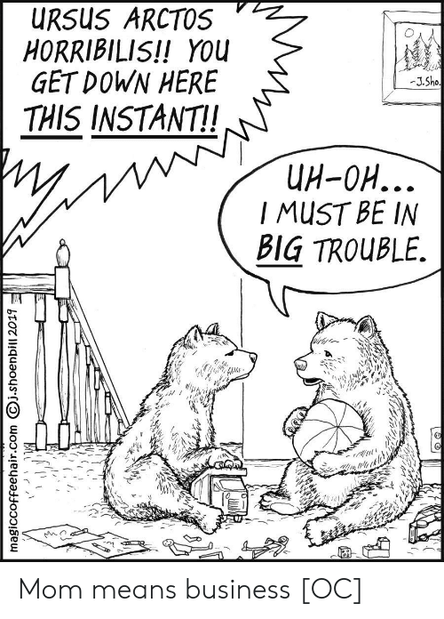 Business, Big Trouble, and Mom: URSUS ARCTOS  HORRIBILIS!! YOU  GET DOWN HERE  -J.Sho  THIS INSTANT!  UH-OH...  I MUST BE IN  BIG TROUBLE.  magiccoffeehair.com j.shoenbill 2019 Mom means business [OC]